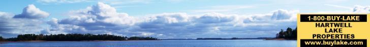 Lake Hartwell View